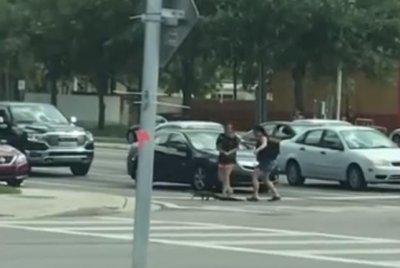 Drivers help alligator use crosswalk in Florida