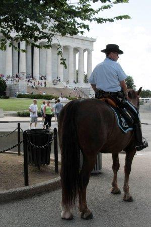 Boston bids farewell to horseback cop unit