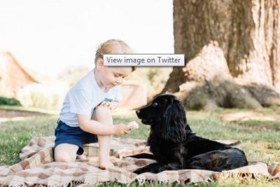 Kate Middleton and Prince William's son George turns 3