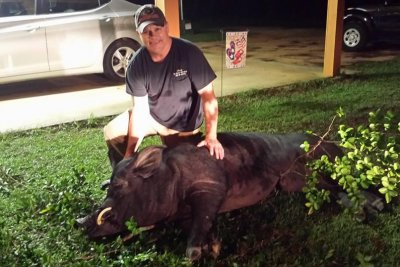 Alabama man shoots 820-pound wild hog in front yard