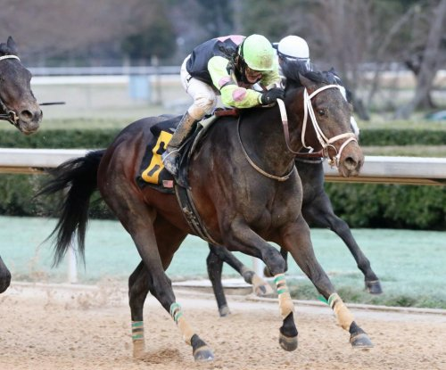 Galilean, Super Steed run into Derby picture with Presidents Day wins