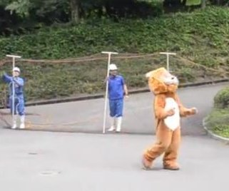 Zoo employee's performance in lion escape drill goes viral
