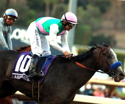 Arrogate runs down California Chrome in Breeders' Cup Classic