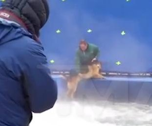 'A Dog's Purpose' under fire after footage of apparent animal cruelty surfaces