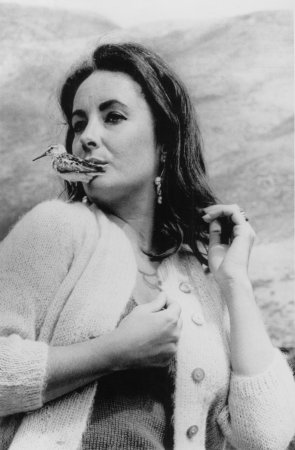 Liz Taylor most photogenic of all time