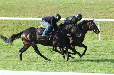 Ascot and Her Majesty open Royal Meeting on Tuesday