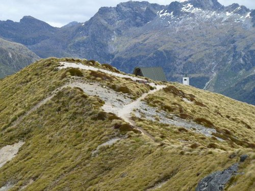 Bodies in New Zealand believed to be Canadian hikers