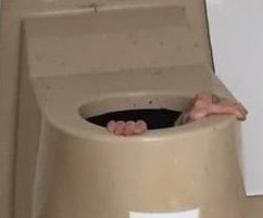 Man trying to rescue cellphone gets trapped in portable toilet's poop tank