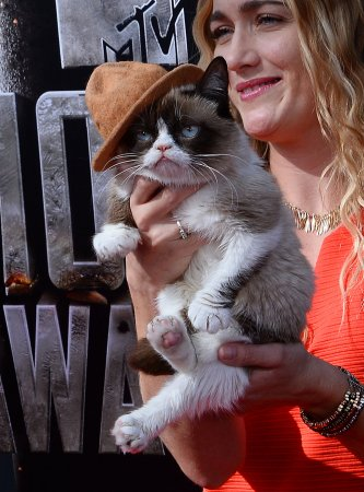 Grumpy Cat makes appearance on 'Idol' [VIDEO]