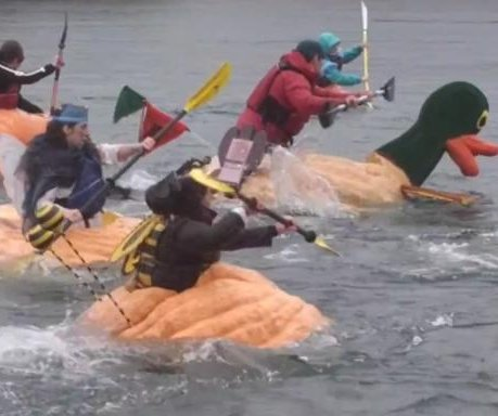 Pumpkin Regatta racers paddle hollowed-out gourds