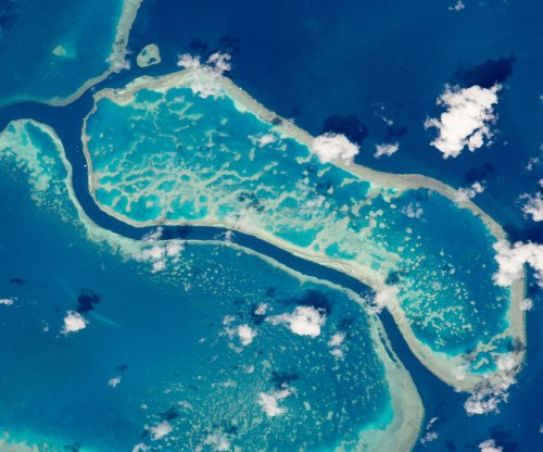 Alkalinizing agent could offset years of acidification around Great Barrier Reef