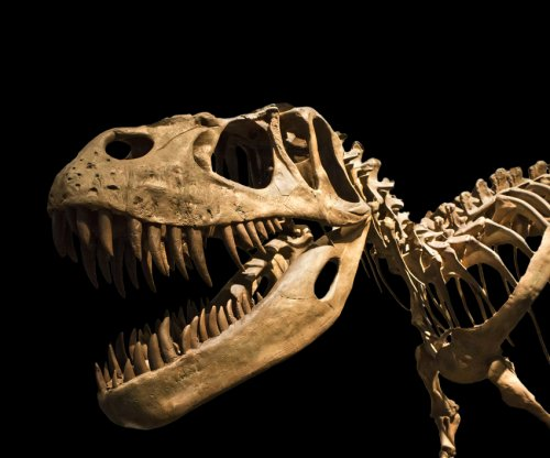 New dinosaur had 'T. rex arms' that evolved independently