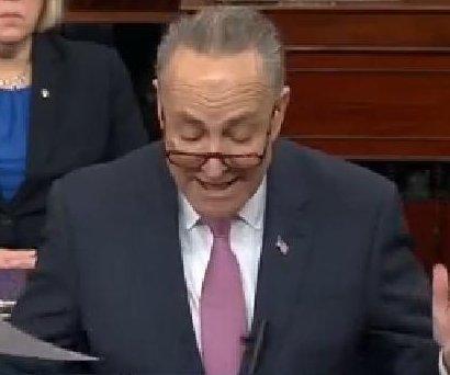 New Senate Dem leader Schumer: 'Harmful GOP policies will crash in 115th Congress'