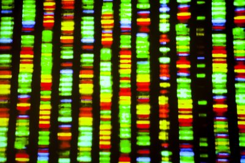 Genetic testing of pancreatic cancer tumors may improve treatment