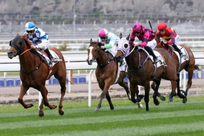 Winx wins 32nd straight; Hong Kong brings racing to Chinese Mainland