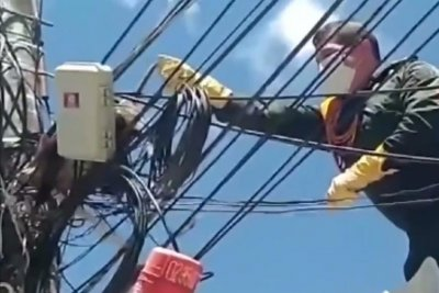 Police rescue opossum tangled in cables atop utility pole