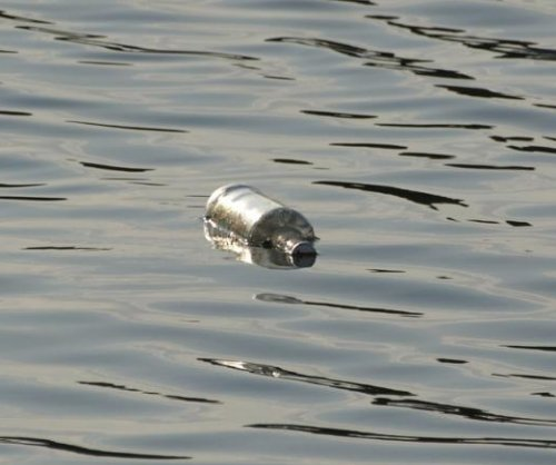 Message in a bottle plucked out of Boston Harbor