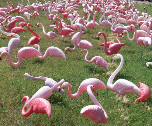 Don Featherstone, creator of the pink plastic flamingo, dies at 79