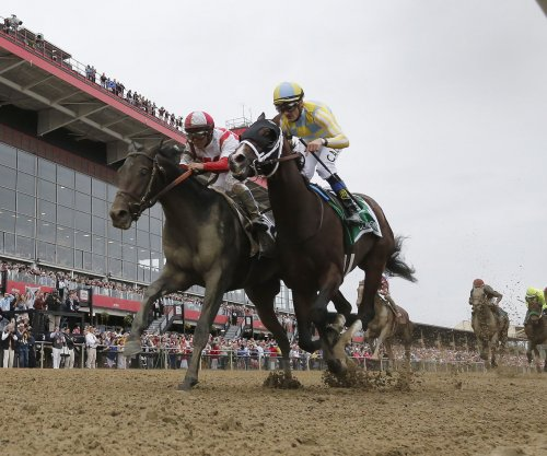 Preakness champ Cloud Computing might not run in Belmont