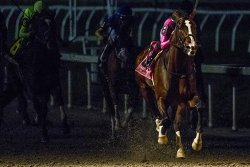 UPI Horse Racing Roundup: Overseas sprint action and KY Derby preps take spotlight