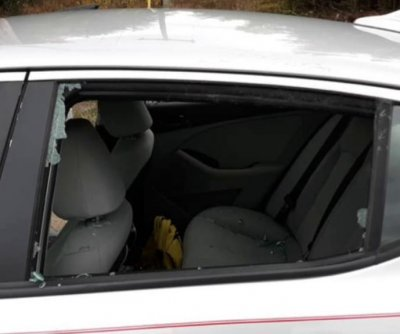 Deer crashes through both backseat windows of moving car