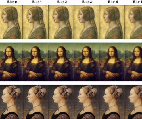 Researchers detail second da Vinci smile