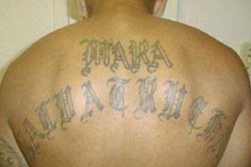 Federal, local agents arrest 21 MS-13 gang members in Los Angeles