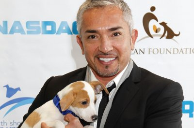 cesar millan ya muriocesar millan instagram, cesar millan dog whisperer, cesar millan youtube, cesar millan daddy, cesar millan collar, cesar millan wien, cesar millan live, cesar millan 2017, cesar millan official website, cesar millan photo, cesar millan en français, cesar millan belgium, cesar millan national geographic, cesar millan ya murio, cesar millan insta, cesar millan's dog nation, cesar millan chihuahua, cesar millan and son, cesar millan films, cesar millan spain