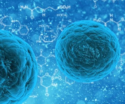 Scientists uncover more details on how cells dispose of waste