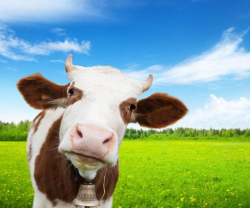 FDA to require data on drugs used in food animals