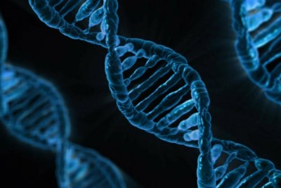 Gene-editing technology may help cure blood disorders