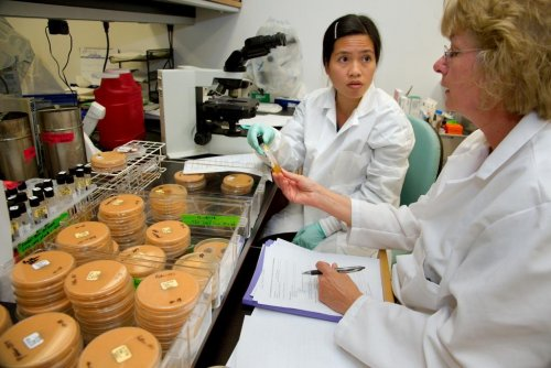 The Year in Review 2012: Fungal meningitis caused 37 needless deaths