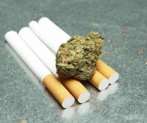 Nicotine changes marijuana's effect on the brain