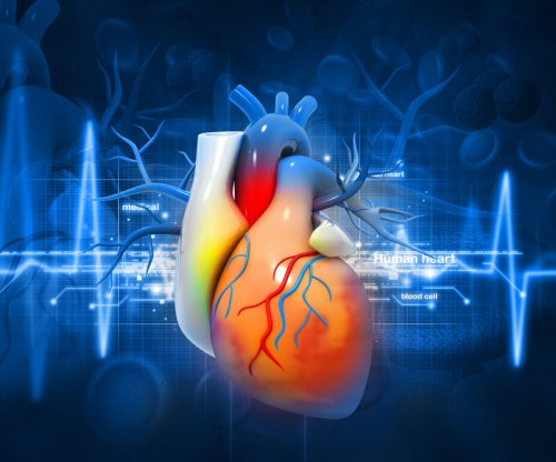 Study finds body's zinc supply affects heart health