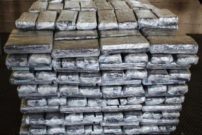Customs: Avocado shipment concealed 1,055 pounds of pot