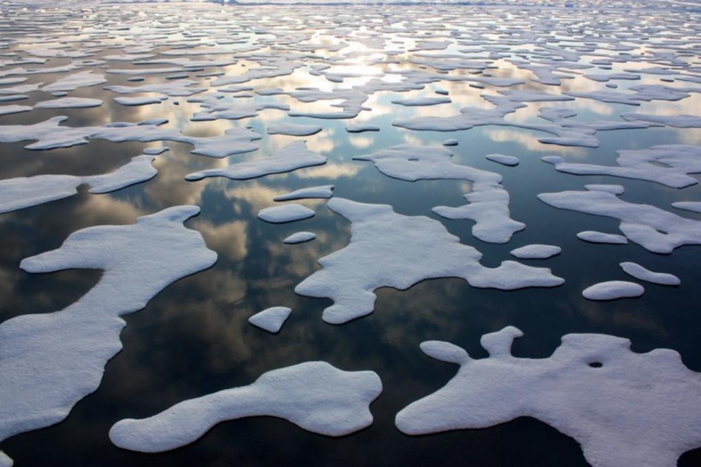 Risultati immagini per Arctic Sea Ice Reaches Another Record Low
