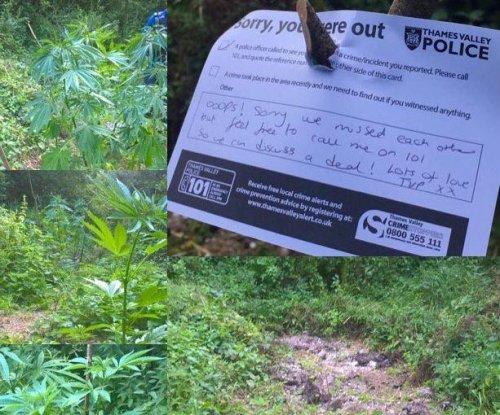 British police find marijuana field, leave owner a polite note
