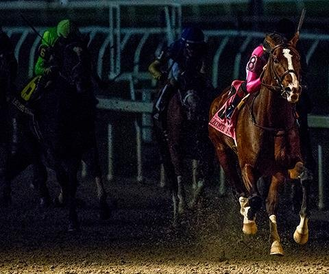 War of Will and Gray Attempt featured in weekend Kentucky Derby preps