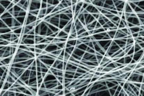 Bacteria-coated nanowire electrodes remove contaminants from wastewater