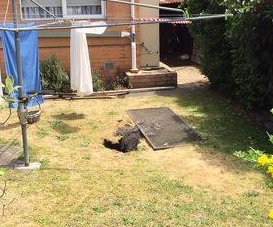 Sinkhole swallows woman in Australian back yard