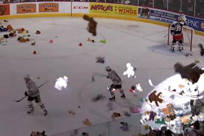Watch:-45,650-teddy-bears-thrown-onto-ice-during-hockey-game