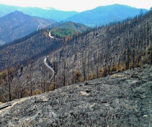 Two men billed $37 million for sparking Oregon forest fire