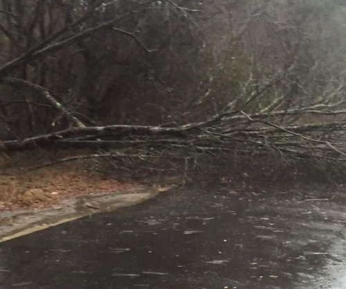 Severe storms in Georgia blamed for at least 11 deaths