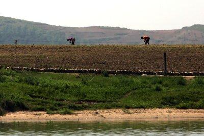 World Food Program reaches out to South Korea amid crises