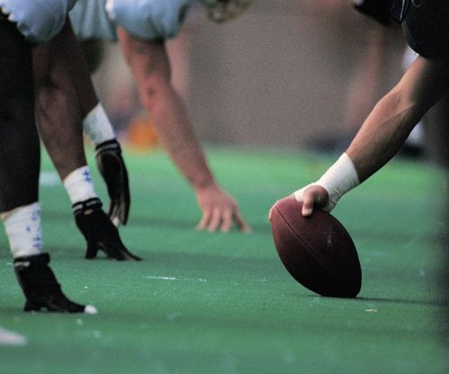 Football fans still loyal despite concerns about players' brains