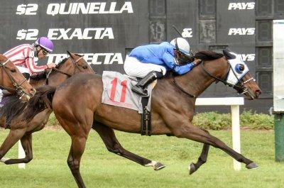 Belmont Park turf stakes draw top European talent in weekend horse racing