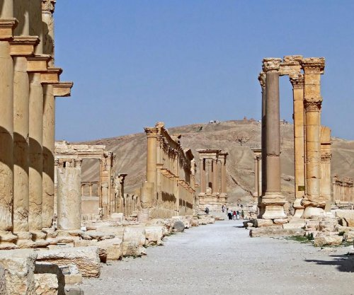 IS holds 50 percent of Syria, Palmyra ruins at risk