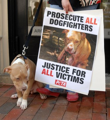 Man pried open dog's jaws to free girl, 6