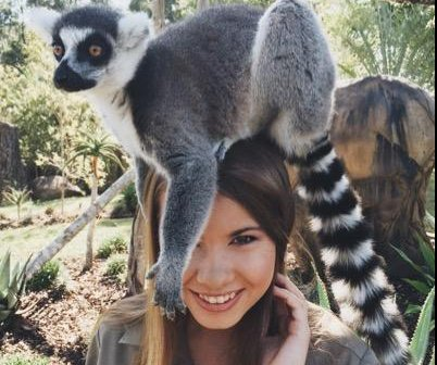 Bindi Irwin to compete on 'Dancing with the Stars'