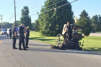 Ohio police officer hops into buggy to stop runaway horse